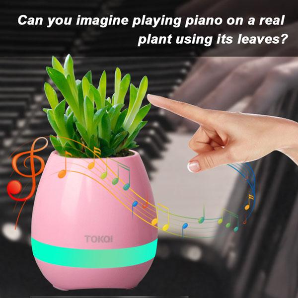 Loa trồng cây, loa Bluetooth chậu hoa, chậu cây phát nhạc đẹp mắt trong căn phòng hiện đại